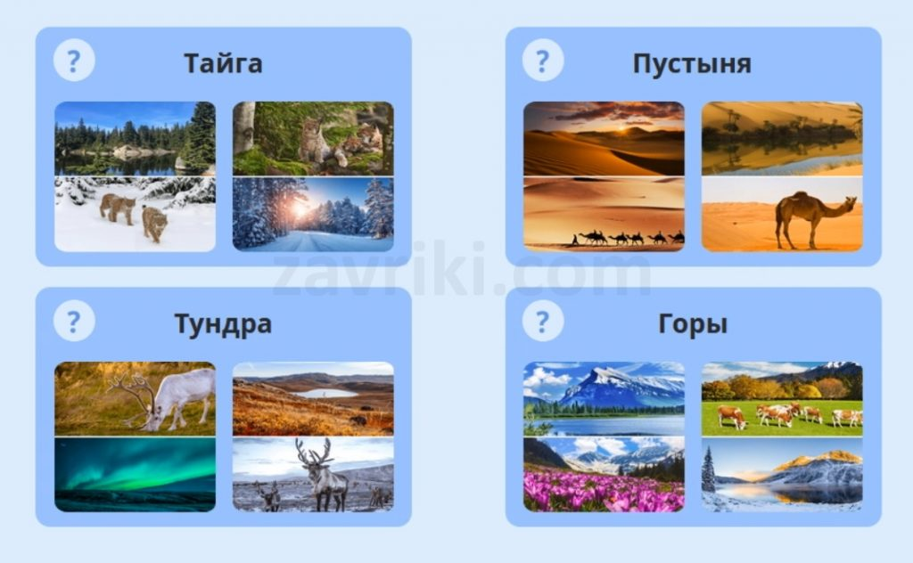Климат (Окружающий мир олимпиада Учи.ру)